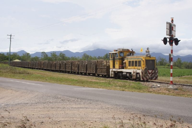 A loaded cane train heads back to the mill